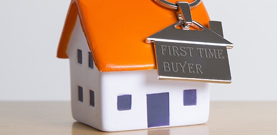 Tips for First Time Homeowners2
